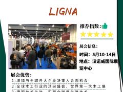 2021年德国汉诺威国际木工机械展LIGNA